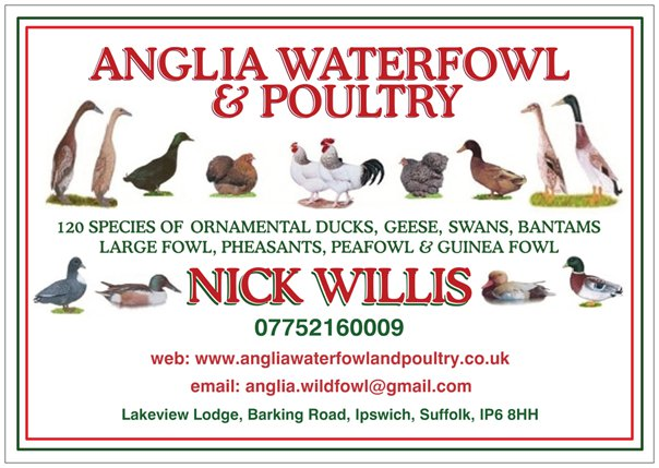 Welcome To Anglia Waterfowl And Poultry The Leading